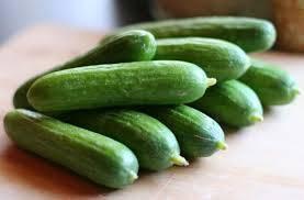 Siani_Future(Vegetables)