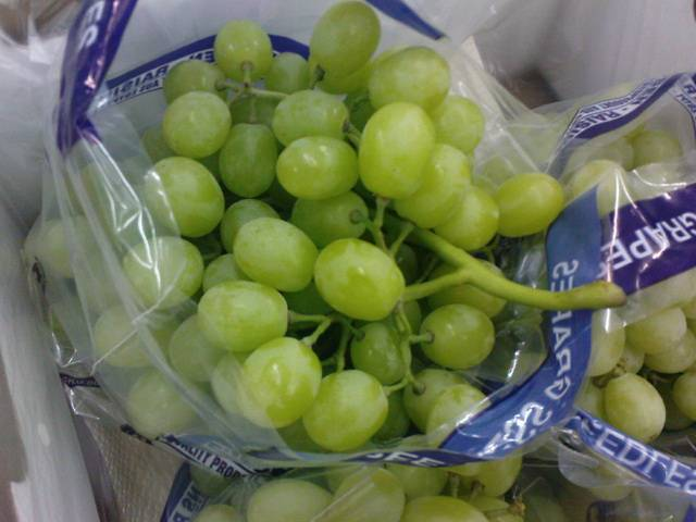 Fresh Grapes Competitive Price