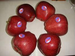 Fresh Top Red Apple for sale