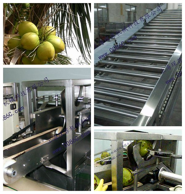coconut processing line machine, coconut water production line machine