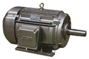 Sell NEMA High-Efficiency Three Phase Induction Motor