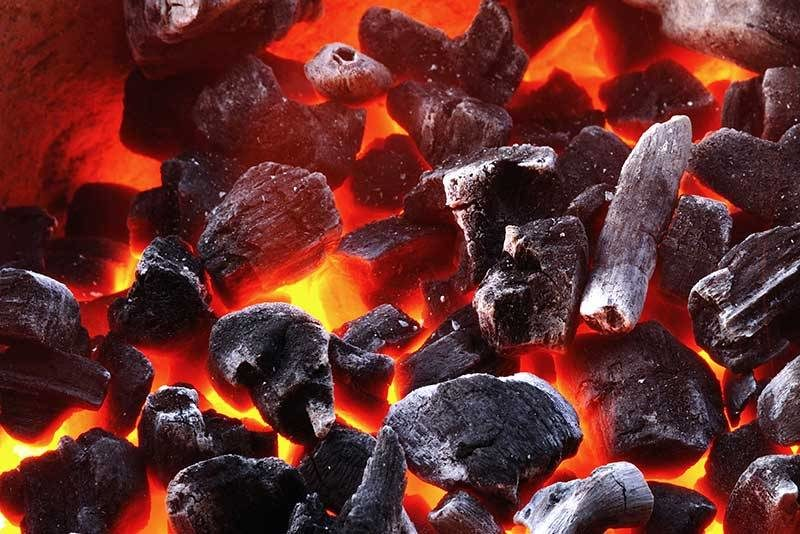 hardwood charcoal and briquettes