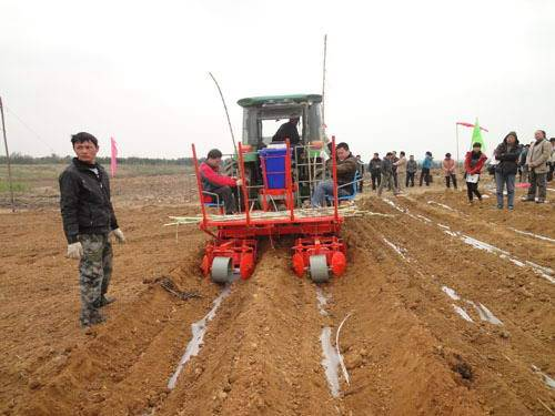 Strong function from TAGRM double rows sugar cane cultivator