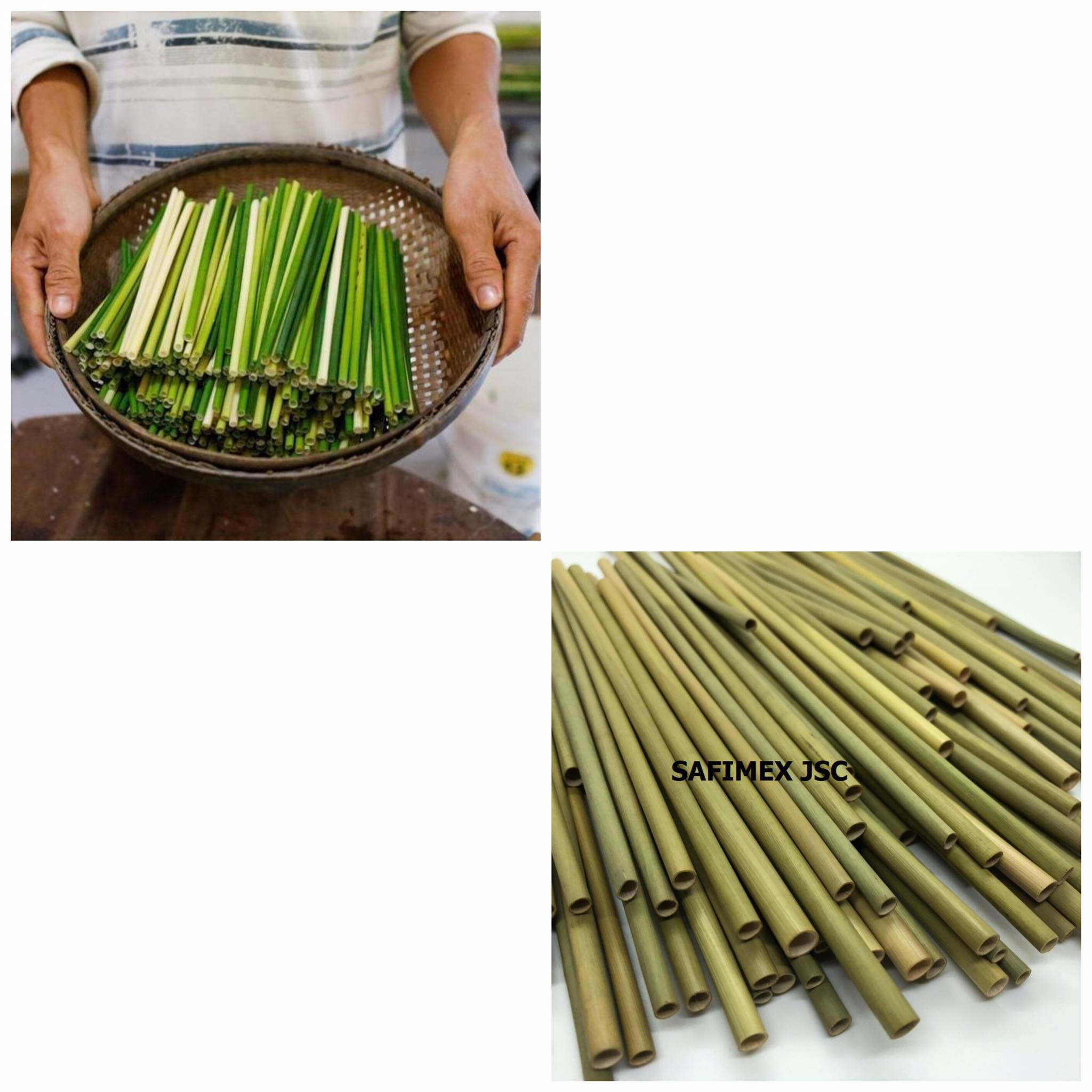 Eco-friendly biodegradable wheat grass straw for drinking