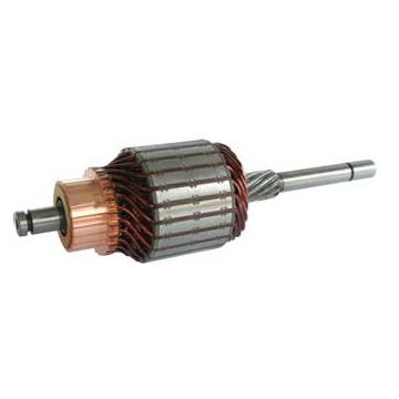 Starter Motor Armature, Cargo 134084 132164, WSA59204 WSA5874, Replacing 1004003152 and 1004003909