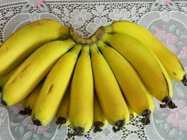 Fresh Laba Banana