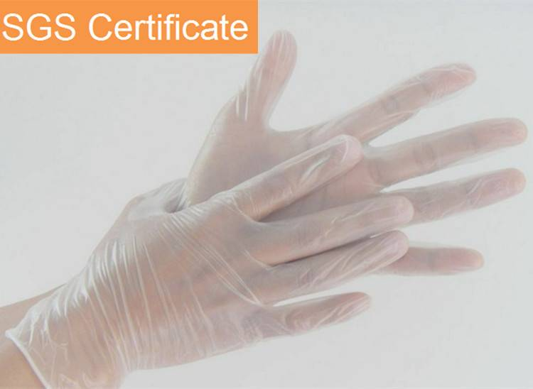 Hot Selling 9 Inch DisposableVinyl Gloves With Powdered