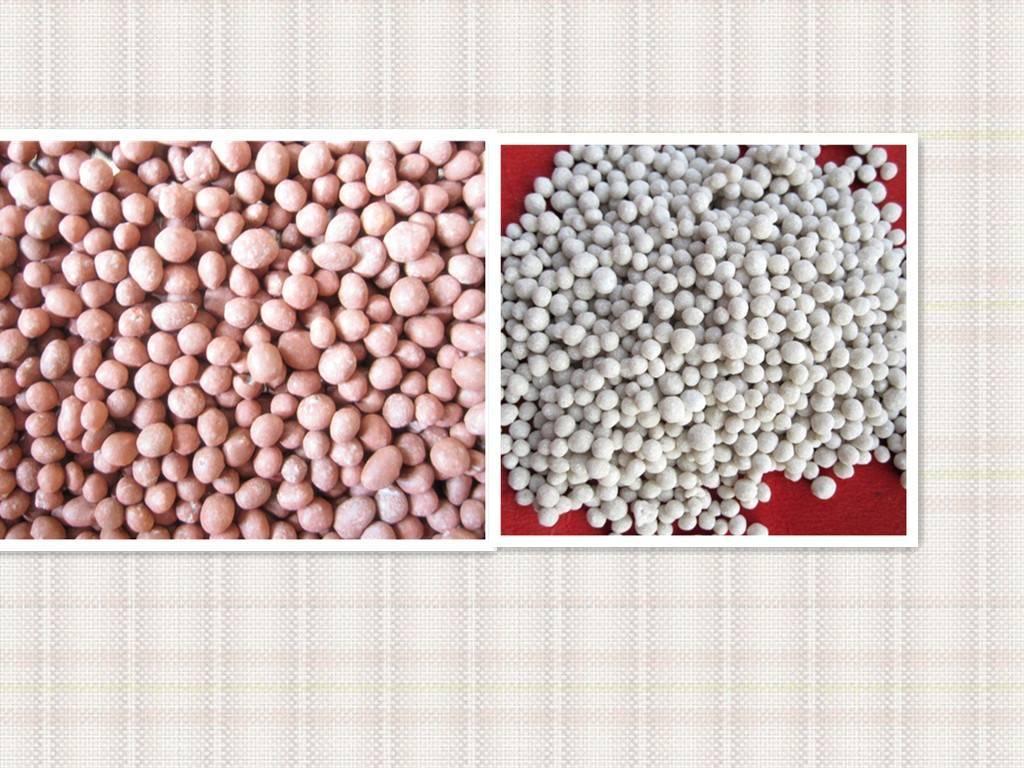 Compoun Fertilizer 12-12-18+2MgO