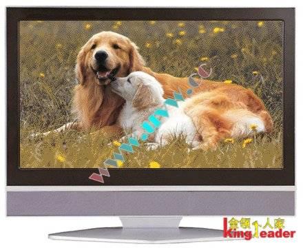 Supply Fake Plasma TV Props for showroom