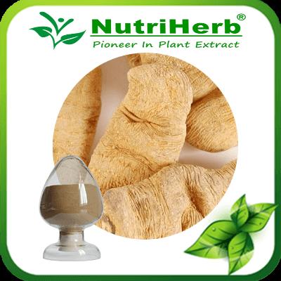 Rhizom Gastrodiae Extract/Gastrodia elata Blume Rhizom Gastrodiae P.e/98% Gastrodine