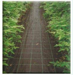 offer PP non-woven fabric ,winter protection fabric ,weed control mat