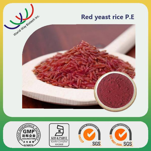 free sample for test HACCP GMP certified supplier pure natural 1% lovastatin red yeast rice extract