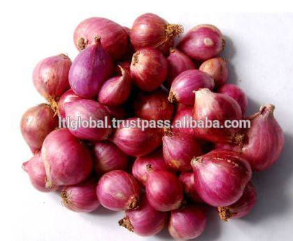 Sell Fresh Red Onion