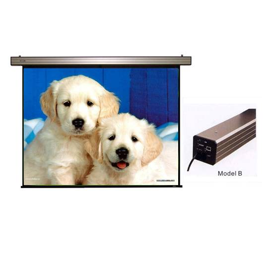 Wall mount Electric Projector Screen with White Steel Case