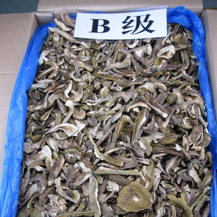 Bulk Dried Funghi Porcini Slices with Grade B