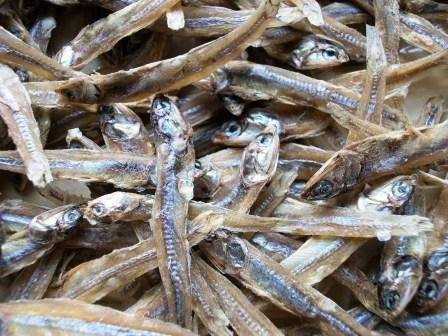 100% SUN DRIED ANCHOVY/SPRATTS AT COMPETITIVE PRICES