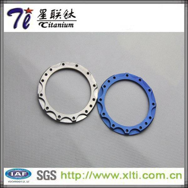 Customized Gr5 Titanium Flange for Chemical Industry