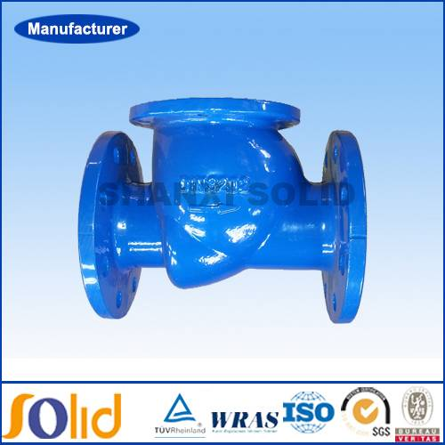 DIN standard Ductile Iron Flanged End Swing Check Valve