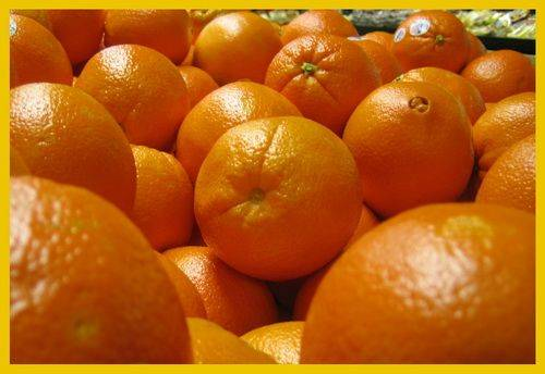 Fresh Valencia oranges for sale