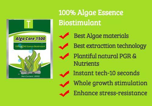 Alga Core 1500