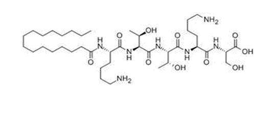 Matrixyl (Palmitoyl Pentapeptide) CAS 214047-00-4