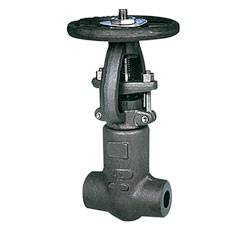 Special purposes gate valves