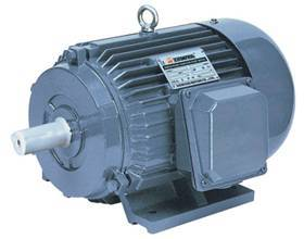 AC MOTOR(Y series three-phase induction motor)