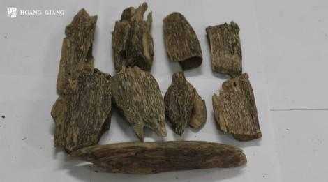 Agarwood chunk Grade A - ACKA