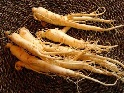 American ginseng extract for tonic