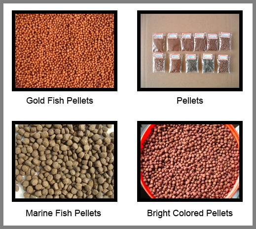 Pellets fish feed
