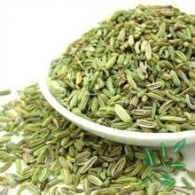 fennel seed;Fructus Foeniculi