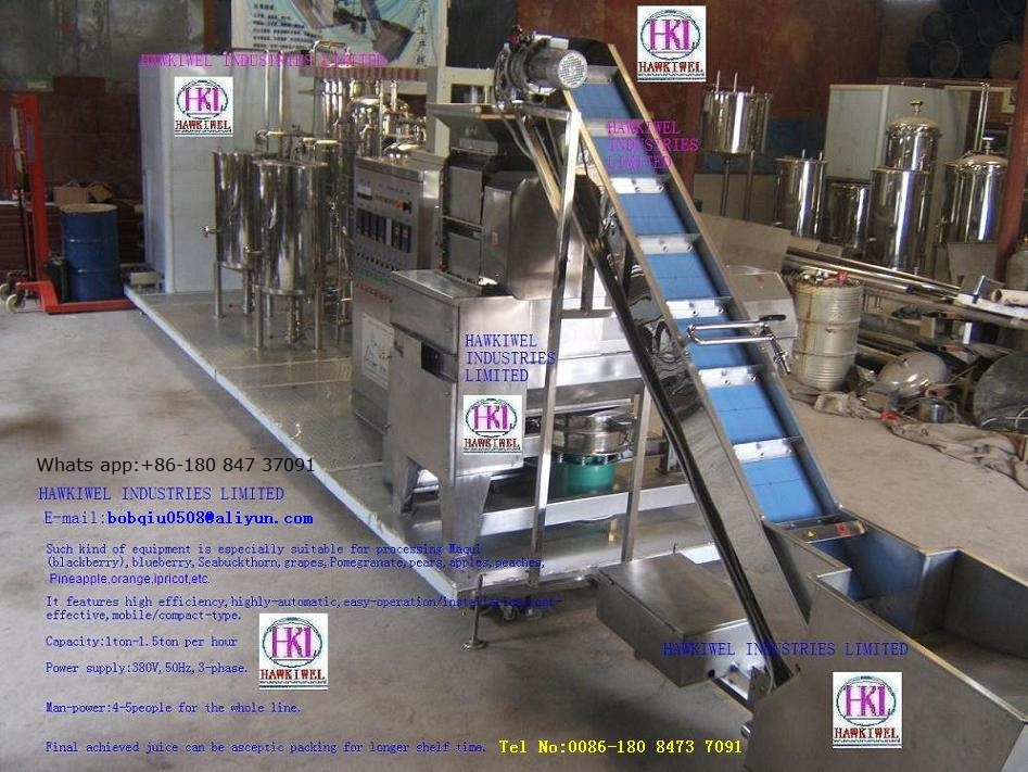 sell blueberry juice making machine