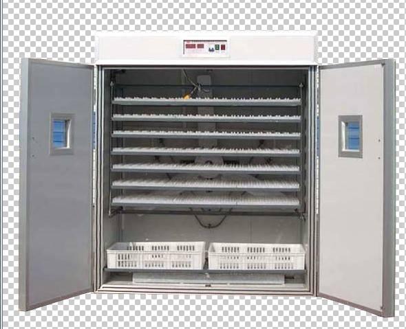 egg incubator for 1848 eggs