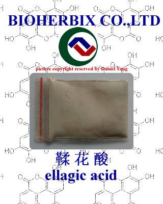 ellagic acid