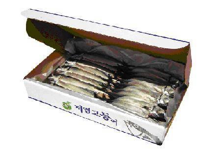 Frozen Salted Mackerel