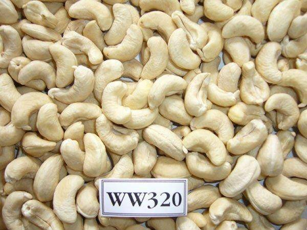 Cashew Nut Offer