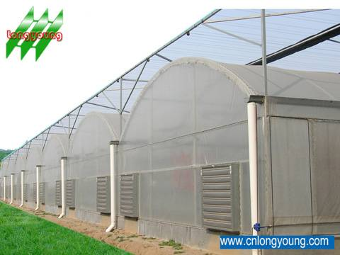 agricultural greenhouse on sale