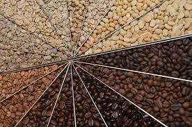 Arabica Coffee Beans From Africa