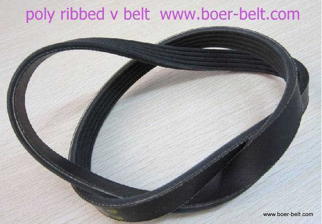 automotive v-ribbed belt poly belt