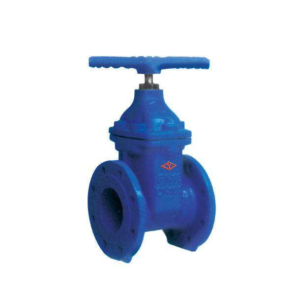 DIN Non Rising Stem Cast Iron Gate Valve (CE)