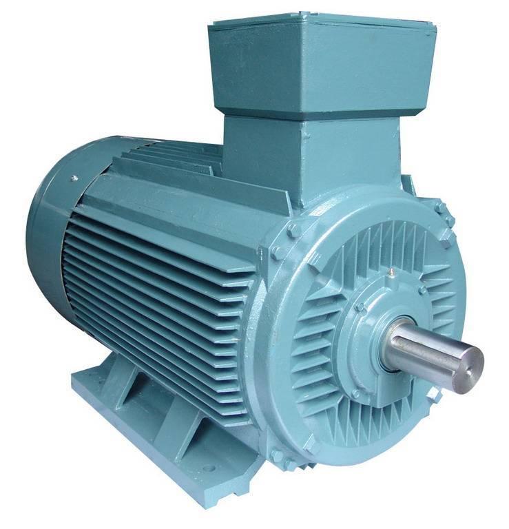Y2 series electric motor