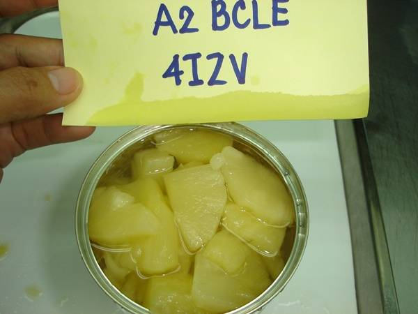 sell frozen fresh Durian Monthong,Canned pineapple slice and Other fruit thailand