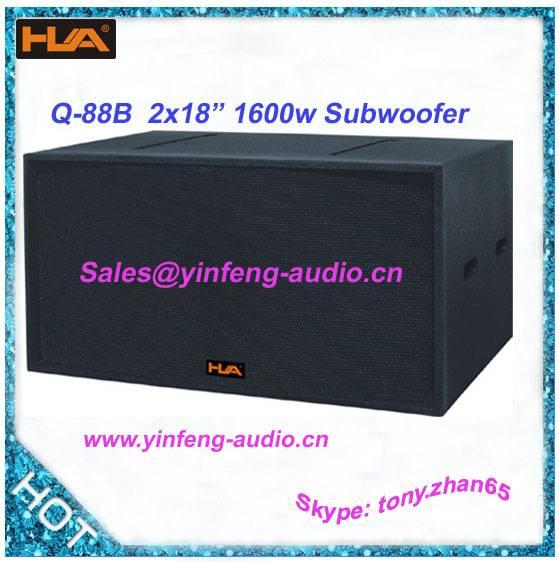 Professopnal subwoofer speaker