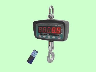 FCS-SP Patable Crane Scale
