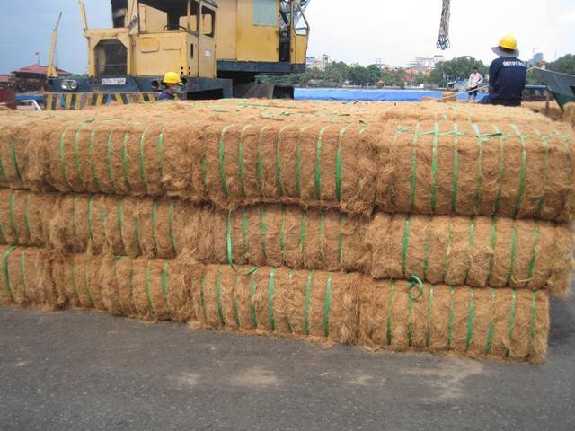 We supply Coconut Fiber with large quantity