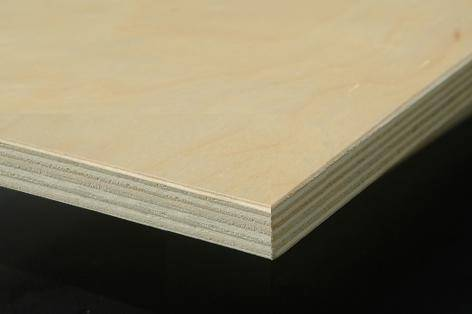 sell birch plywood