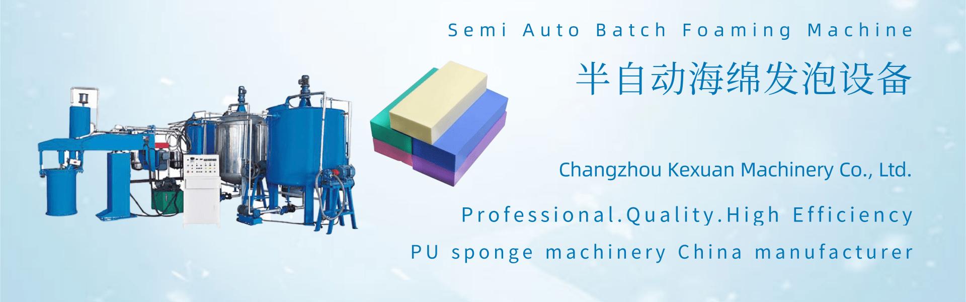 Semi Automatic Batch Foaming Machine