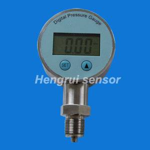 Sell digital pressure gauge PT3081