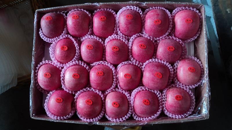 Fresh Fuji Apples in China---- Qingdao Wanda Group