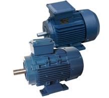 Y2 series three-phase motors